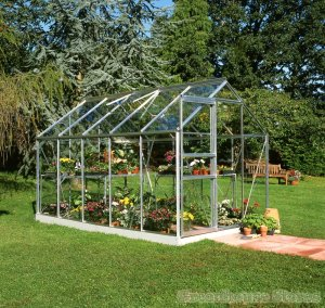 Halls Popular 6 x 10 Silver horticultural greenhousestores
