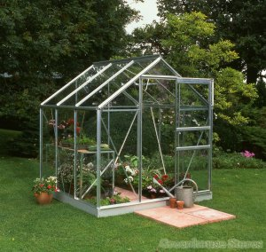 Halls Popular 6x6 Silver greenhouse horticultural greenhousestores